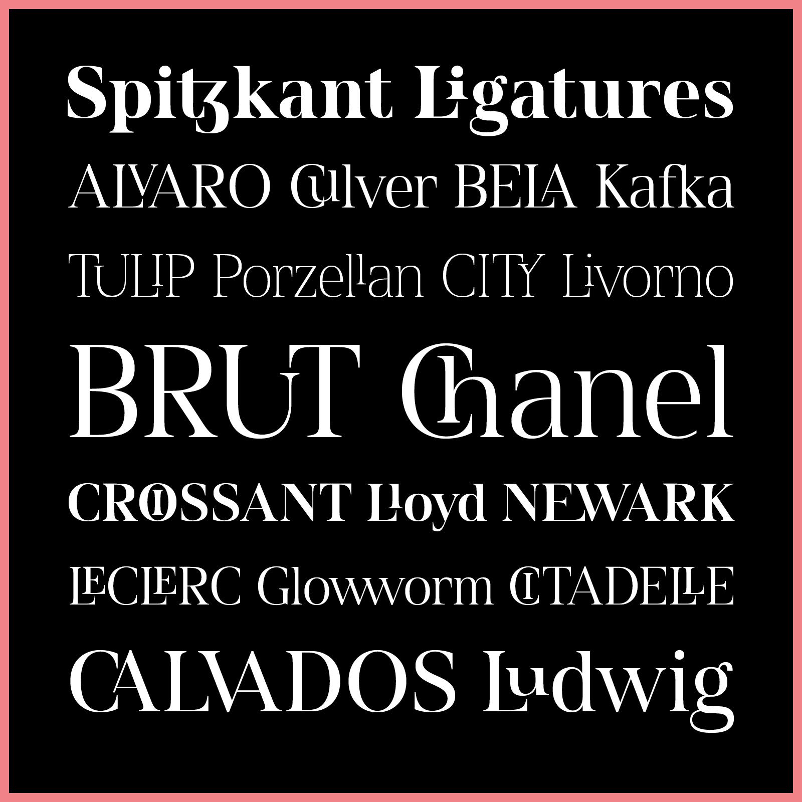 Spitzkant Type Family - Julien Fincker